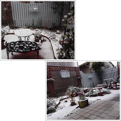 20140214ホワイトバレンタインデー