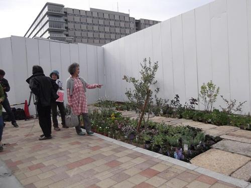 20141109京都市電の敷石②