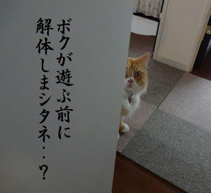 エツコ・・