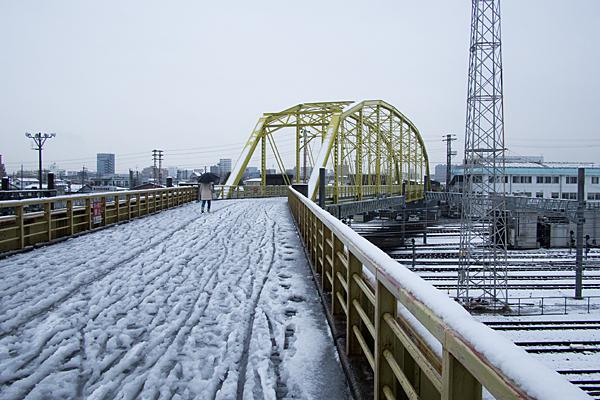 向野橋-4
