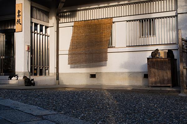 竜泉寺-9