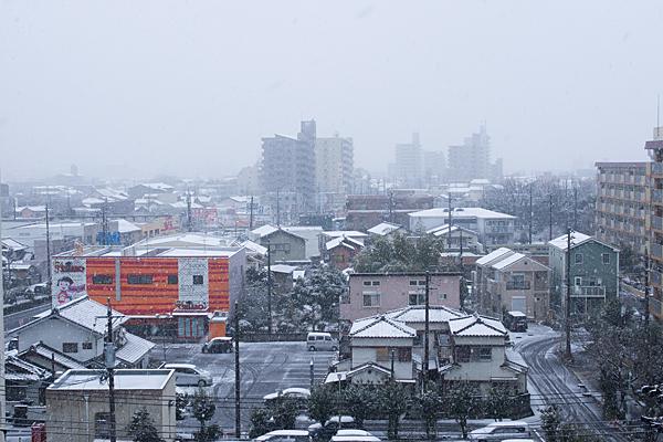 雪の日-1