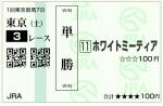 wh_20140222_東京03_tan