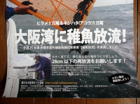 釣り9 P1020654