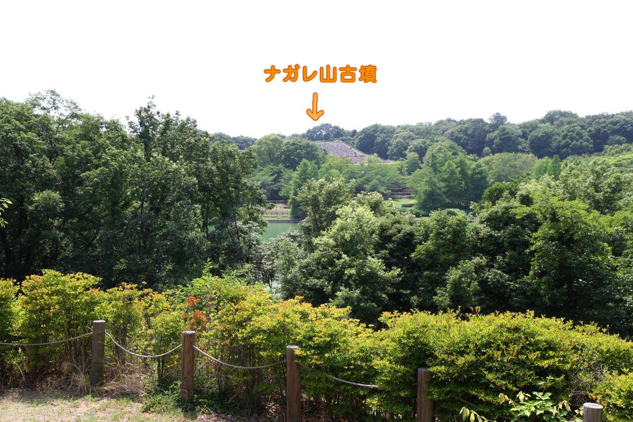 7D2_0721.jpg