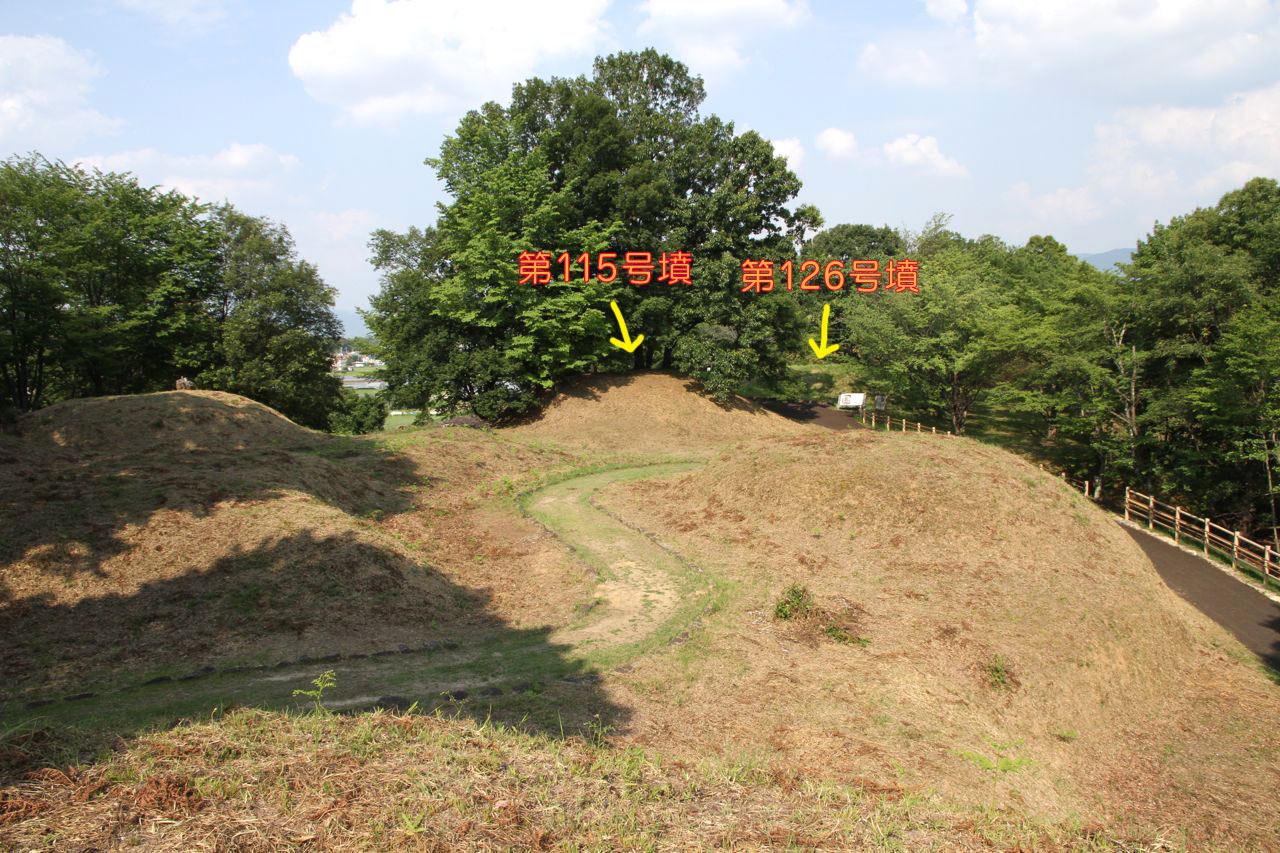 niizawa_7.jpg