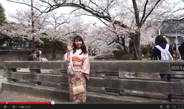 catch_kyotospring14.jpg