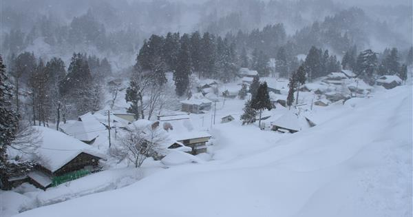catch_snowstorm.jpg