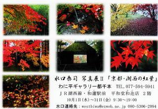 mizuguchi201410011.jpg