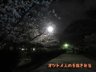11IMG_3998のコピー