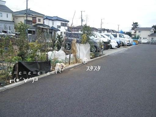 DSCF3989.jpg