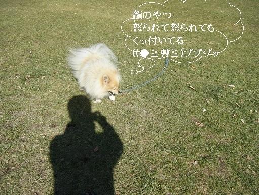 DSCF4279.jpg