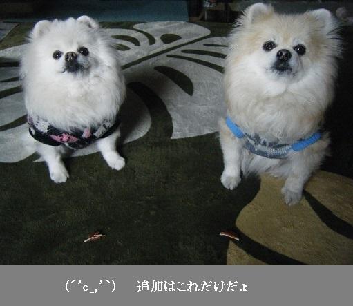 DSCF4648.jpg