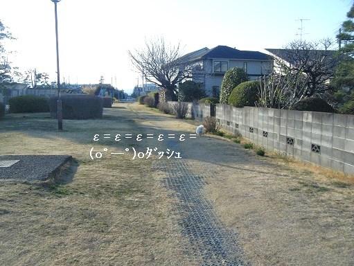 DSCF4899.jpg