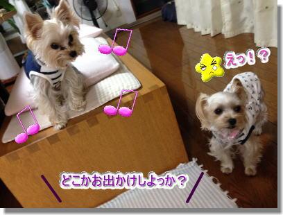 20141029004.jpg