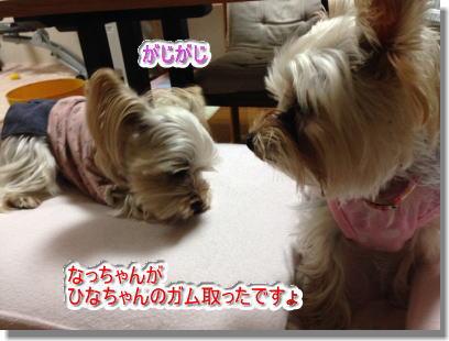 20141101002.jpg