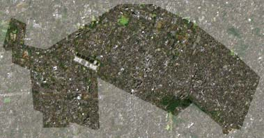 武蔵野市の衛星写真001