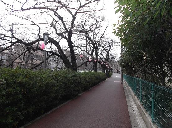 石神井川658