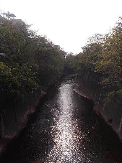 石神井川1512