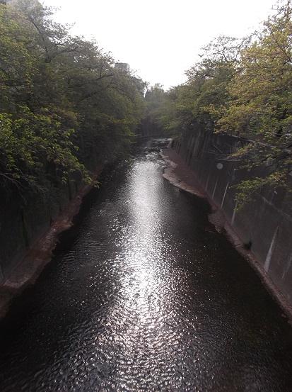 石神井川1511
