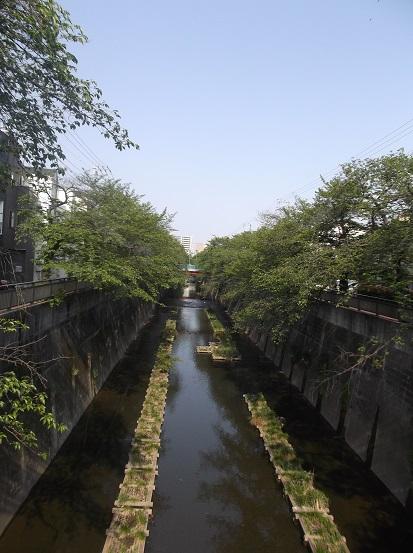 石神井川1643