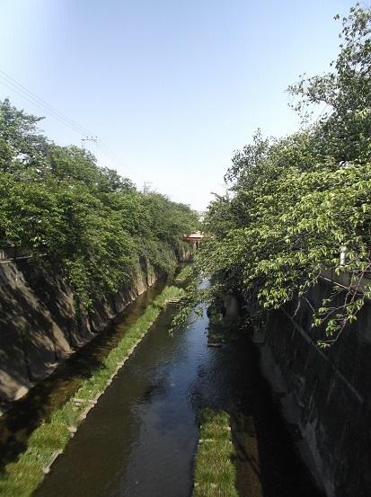 石神井川1809