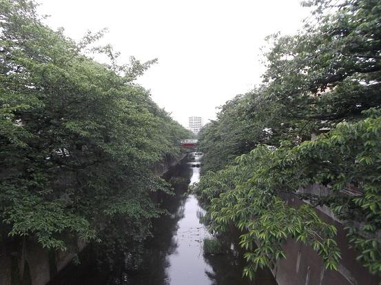 石神井川1876