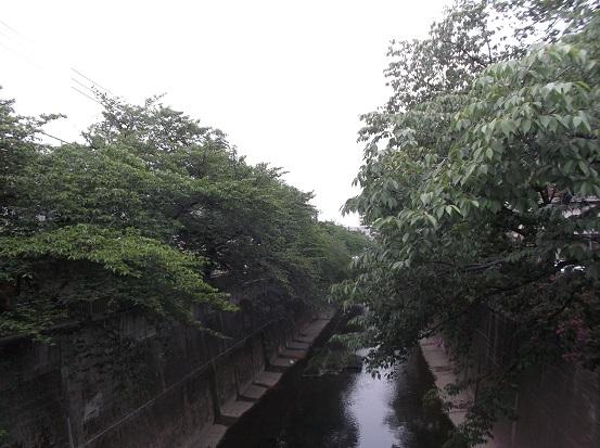 石神井川1883