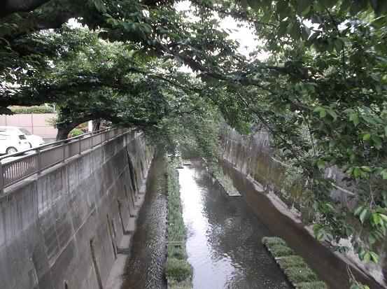 石神井川1934
