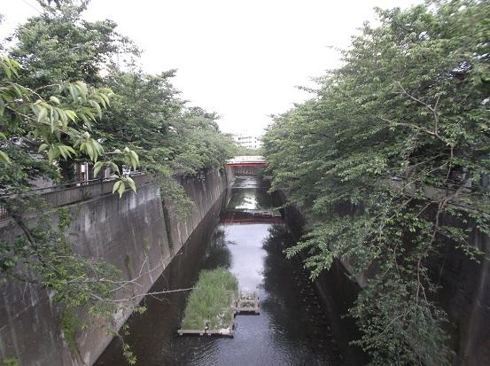 石神井川1893