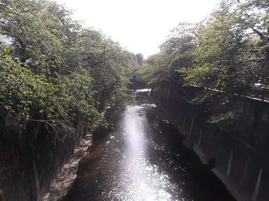 石神井川1831