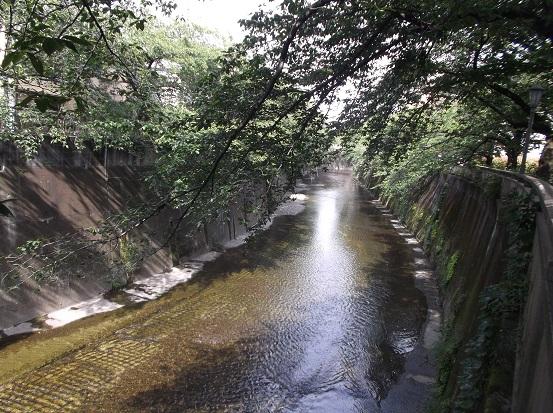 石神井川1952