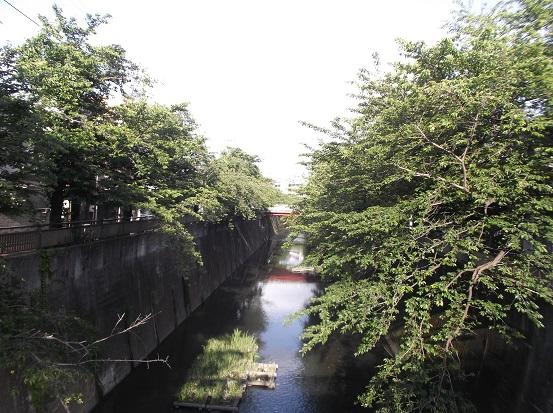 石神井川1922