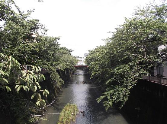 石神井川2003