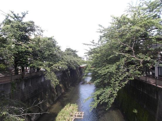 石神井川2045