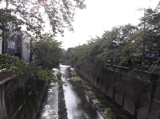 石神井川2106