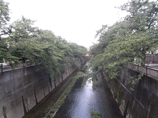 石神井2110