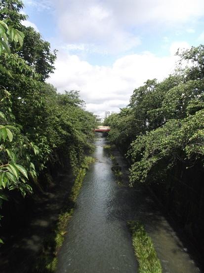 石神井2007