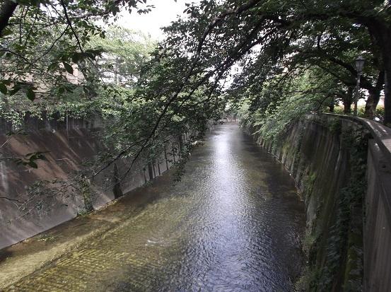 石神井川2082