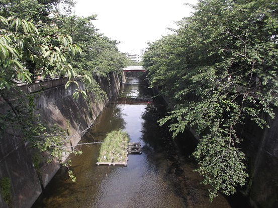 石神井1950