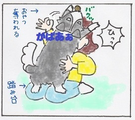 ドッグキャッチ6