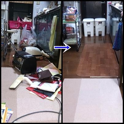 cats_2014032517575589f.jpg