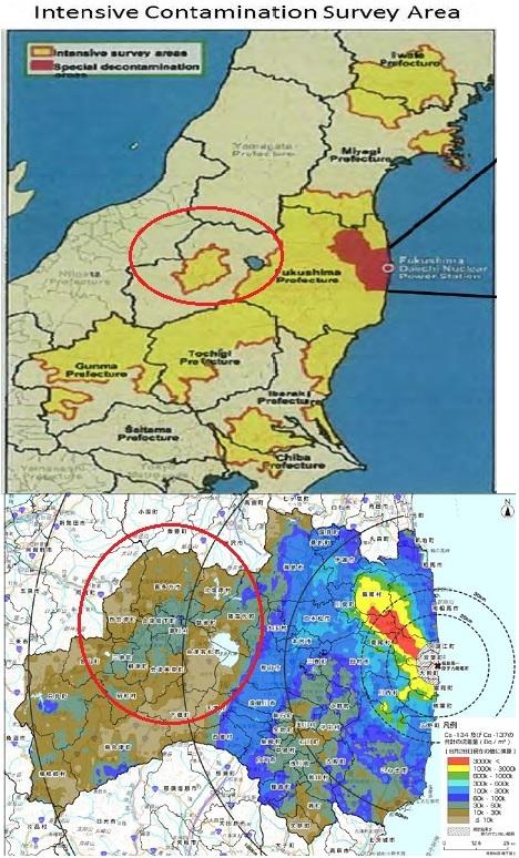 会津汚染3