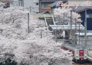 木野山駅をアップで