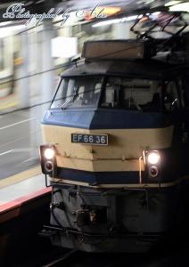 5088レ(=EF66-36牽引)