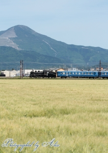 SL北びわこ3号:9243レ(=C56-160牽引)