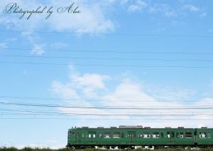 113系緑色も、空背景ならば何とか…