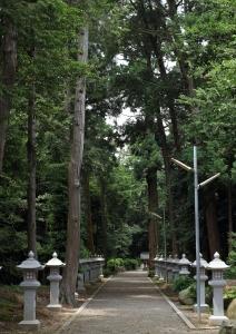 苗村神社・東本殿参拝道