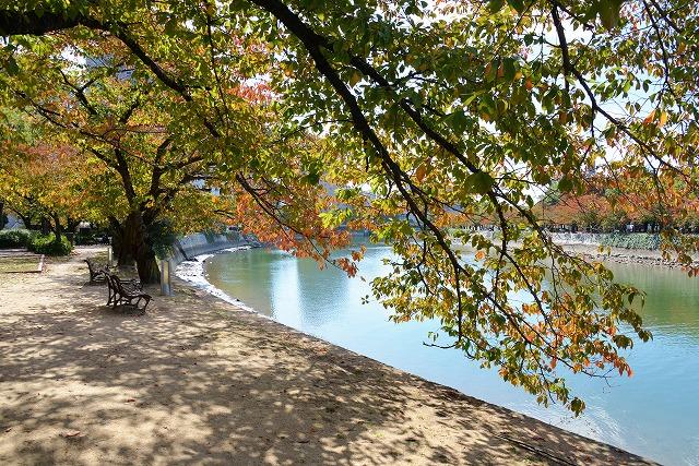 平和公園・紅葉1