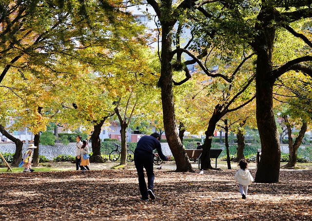 平和公園・紅葉11